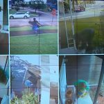 Porch Pirates Bait Packages